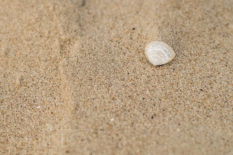 zrób-to-wikilistka-7, bałtyk, muszelka, morski piasek, na plaży, wikilistka, lifestyle, blog