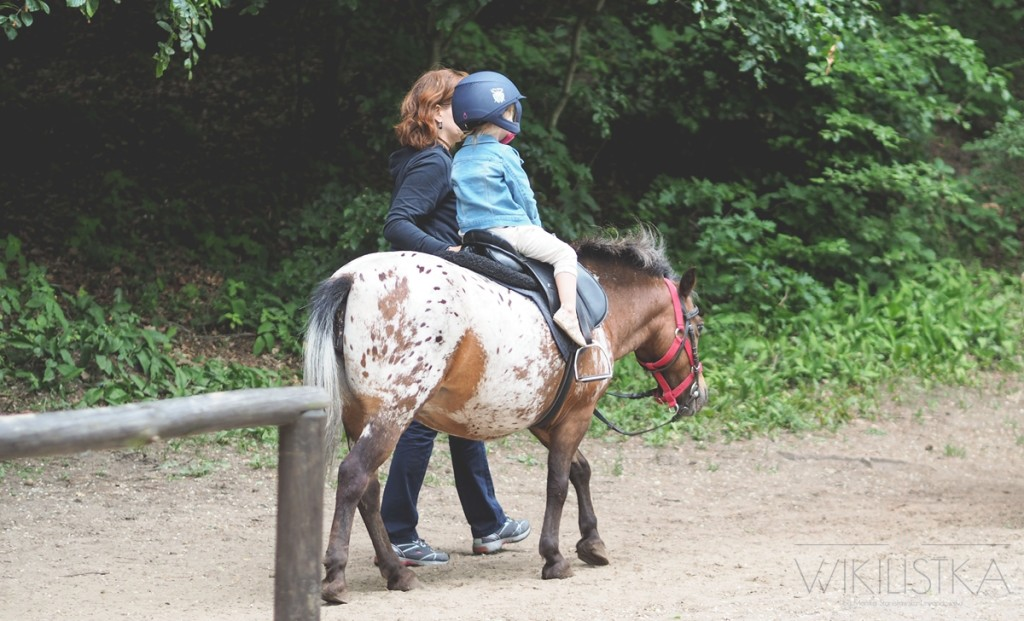 wikilistka, przejażdżka konna