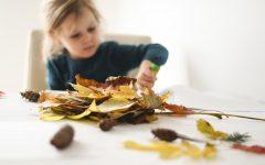 Jesień, liście, zabawy dla dziewczynki i chłopca - szyszki, liście