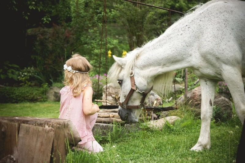 perfekcjonizm, moda dziecięca, blog parentingowy, fotografia dziecięca, koń