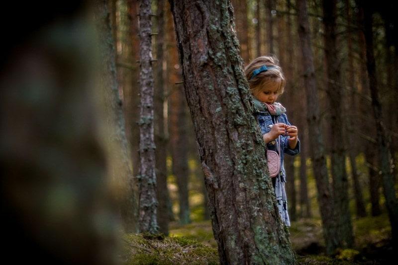 Dziecko z ukrycia, tukany, sukienka, las