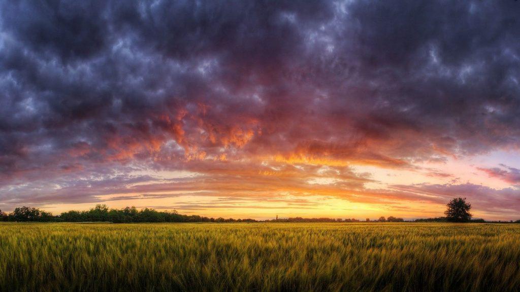 Motywacja, pole, nad którym unoszą się chmury, zachód słońca