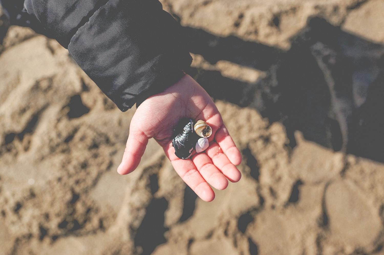 slow life, life balance, zatoka sztuki, sopot, muszle, plaża, blog parentingowy